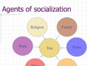 agents of socialization