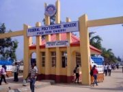 federal polytechnic nekede courses