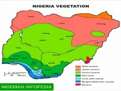 vegetations in Nigeria