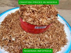 crayfish prices in Nigeria