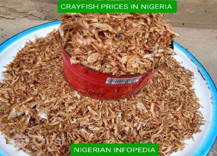 crayfish prices in Nigeria